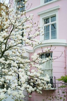Pretty pink house with lovely windows