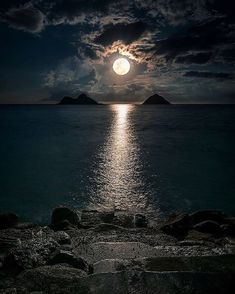 """Moon flirts with the Sea in the secrets of night 😲🙄 Nature love is Invisible 😍"" Beautiful Sky, Beautiful Landscapes, Nature Pictures, Beautiful Pictures, Shoot The Moon, Moon Photography, Moon Art, Amazing Nature, Belle Photo"