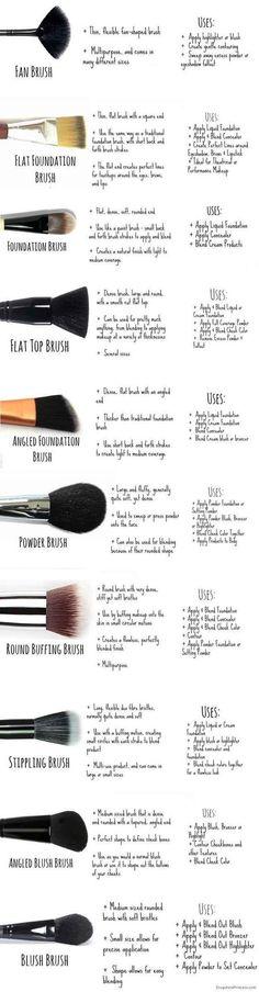 Makeup brushes 101.