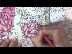 Video Coloring Tutorial: Pencil  Blending and Choosing Colors to color in Johanna Basford's Enchanted Forest book.