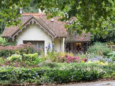 cottage in London - definitely an English garden!