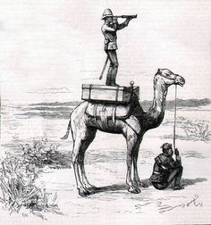British colonial camel corps in Egypt