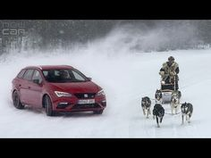 NEWCARNET - SEAT's new flagship Leon Cupra 300 was in Lapland for a fun challenge - to test the brand's most powerful model to date, against a pack of huskie. Balcony Table And Chairs, Wooden Dining Room Chairs, Wayfair Living Room Chairs, Accent Chairs For Living Room, Swivel Rocker Recliner Chair, Swivel Armchair, Alaska, Seat Cupra, Beach Chair With Canopy