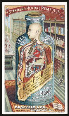 Vintage ads for health products · standard herbal remedies by dr., binghamton, n.