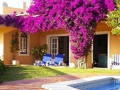 Algarve villas for holiday rental, direct from the owners. P132