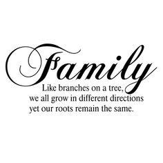 Wall Quotes Wall Decals Our Family A Circle Of Strength Home