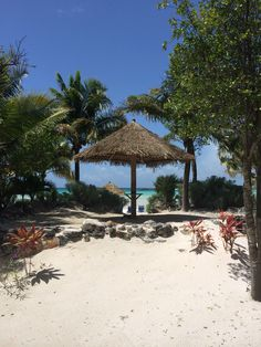 It's a beautiful sunny day today, find yourself some shade & let the sea-breeze take you away. Connect with us on Facebook, Twitter & Pinterest. @abacoclubhomes www.abacoclubhomes.com #Bahamas #Vacation