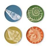 Found it at AllModern - Sea Life Coaster Dish (Set of 4)