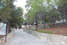 Napier Gardens