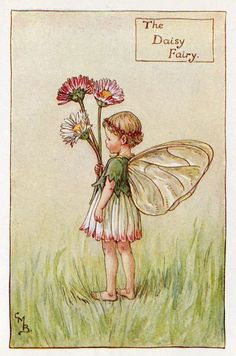 Daisy Flower Fairy Vintage Print c1927 Cicely by TheOldMapShop
