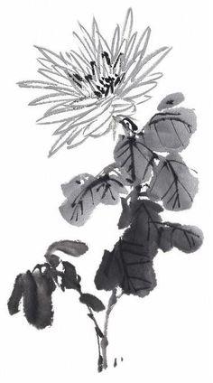 [수묵화 기법] 수묵채색화 기법 ... 꽃(花) 수묵화의 다양한 기법이 잘 표현된 다양한 꽃 그림. 선의 굵기나 먹의 농담, 번짐, 덧칠효과 등을 눈여겨 보면서 감상면 그 표현방법의 차이를 더 잘 느끼실 수 있다. Sumi E Painting, Basic Painting, Japan Painting, Chrysanthemum Drawing, Chinese Painting Flowers, Japanese Art Prints, Japanese Drawings, Chinoiserie, Chinese Art