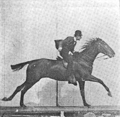 İlk Hareketli Objelerin Fotoğrafı..1872 de İngiltere doğumlu fotoğrafçı Eadweard Muybridge, bir at yarışında atın dört ayağınında yerde olmadığı anı fotoğraflamayı başarmış. Oniki kamerayla bir seri fotoğraf çekerek bir at yarışını adım adım fotoğraflamış. Bunları birleştirerek ilk hareketli görüntüleri oluşturmaya başlamış. Aslında bir anlamda günümüz at yarışı fotofiniş ininde babası olmuş.     Eadweard Muybridge