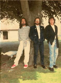 """Three Beatles with a white peacock in 1995, during recording sessions for the single """"Free as a Bird."""" Paul McCartney especially believed that John Lennon's spirit had joined them in the body of the white peacock - read more about that here."""