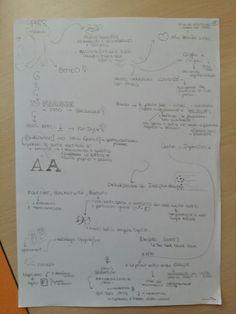 Storia tipografica-schema