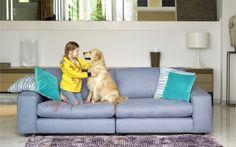 Consejos para limpiar un sofá de tela - http://www.decoluxe.net/consejos-para-limpiar-un-sofa-de-tela/
