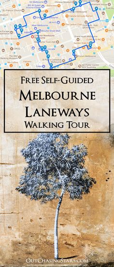 Out Chasing Stars Melbourne Laneways Self-Guided Walking Tour - Out Chasing Stars