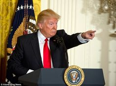 Celebrities respond to Trump's surprise press conference | Daily Mail Online