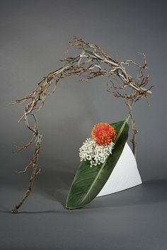 Ikebana incorporating space | Flickr : partage de photos !