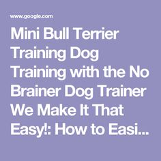 Mini Bull Terrier Training Dog Training with the No Brainer Dog Trainer We Make It That Easy!: How to Easily Train Your Mini Bull Terrier | Pinterest | Mini bu…