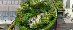 High Line Garden in New York City.