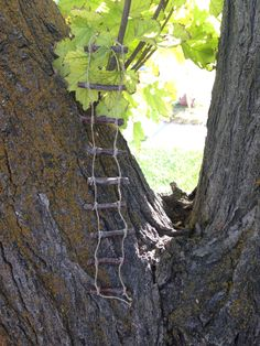 Fairy Garden Wooden Rope Ladder 10 inches by LorainesEmporium