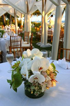 White Orchids With A Green Arrangement For Wedding Flowers Beautiful Hawaiian Themed Centerpieces
