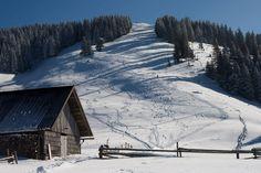 Slovenian Alps, Veliki Javornik