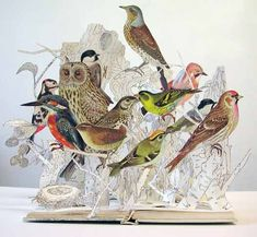 the Illustrative Book of Birds, Su Blackwell, Portfolio Book-Cut Sculpture Altered Books, Altered Art, Art Altéré, Paper Art, Paper Crafts, Paper Book, Papier Diy, Paper Engineering, Bird Book