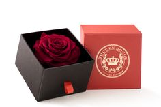 Luxury preserved rose from Toutenrouge. made in Italy. www.toutenrouge.com #luxury #present #rose #roses #preserved #milan #cyprus #fashion
