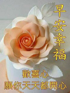 904 Best Good Morning Wishes In Chinese Images Good Morning Wishes