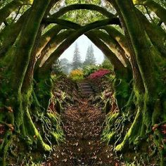 Entrance to the Secret Garden, Portland, Oregon , by architect41 #Secretgardens