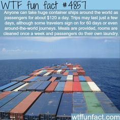 WTF Facts : funny, interesting & weird facts — The container ships tourism - WTF fun facts Oh The Places You'll Go, Cool Places To Visit, Places To Travel, Travel Destinations, Wtf Fun Facts, Random Facts, Strange Facts, Just Dream, I Want To Travel