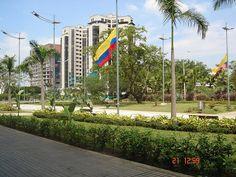Palmetto Shopping Center. Cali, Colombia