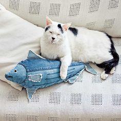 Usedo 猫部 にゃんとびっくり 本格デニム工場で作ったデニムのカツオ