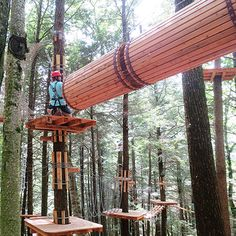 Ramblewild, a forest adventure park in the Berkshires, is now open to the public. At Ramblewild, you can zipline and kayak between the trees.