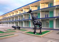 The hippo and giraffe figures on the miniature golf course at the Compass Motel…