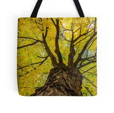 """""""Under the Yellow Canopy"""" Tote Bags by Debra Martz 
