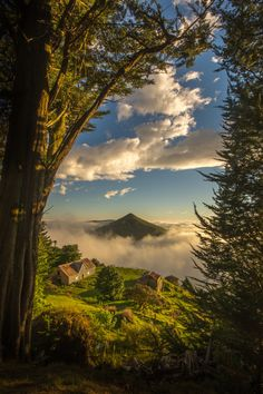 Photograph Cone in the cloud by David Steer on 500px. Taken below Larnachs Castle in Dunedin, New Zealand.
