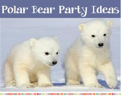 games, polar bears, bear parti, birthday parties, bear party, parti theme, birthdays, kids, parti idea