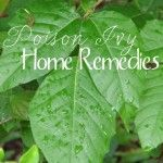 If you find yourself in a patch of poison ivy this summer you are going to want to have this list of home remedies handy!