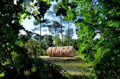 Une douce joie ravit mon âme à la pensée que le tronc du glorieux arbre me servira de refuge périurbain http://www.blog-habitat-durable.com/une-douce-joie-ravit-mon-ame-a-la-pensee-que-le-tronc-du-glorieux-arbre-me-servira-de-refuge-periurbain/
