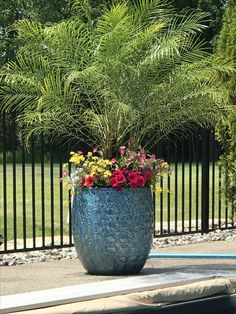 Poolside planter