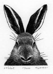 woodcut rabbit - Google Search