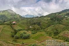 Honduras jungle | San Pedro Sula Honduras Cusuco National Park Jungle.