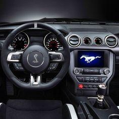 Ford Mustang Shelby GT350R 2017 Motor 5.2L Flat Plane Crank V8 com 500 cavalos  e torque de 542 Nm. Vem de série com o câmbio TREMEC 6 marchas manual e bancos Recaro.  #ford #mustang  #carroesporteclube #acelerados #auto #brasil #cargramm #carporn #carro #carros #cars #carsofinstagram #driver #horsepower #instacarros #instacars #instalike #quatrorodas #racer #speed #voiture #musclecar #ponycar #shelby350 #americancars