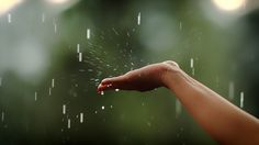 So much fun in the summer rain by Yasir Nisar - Stocksy United Spring Aesthetic, Aesthetic Photo, Rainy Day Pictures, Smell Of Rain, Morning Rain, Rain Days, Rain Photography, Summer Rain, Summer Time