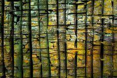Nieuw in mijn Werk aan de Muur shop: Boomstammen patroon