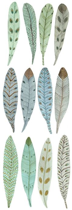 feathers#lifeinstyle #greenwithenvy