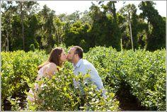 Vineyard Engagement Photos Horn Photography and Design