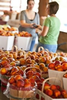 The Porter #Peach Festival is full of #family fun, delicious food and buckets full of peaches. Check out the car and motorcycle show, talent competition, play games and check out the Peach Parade all while eating homemade peach ice cream.